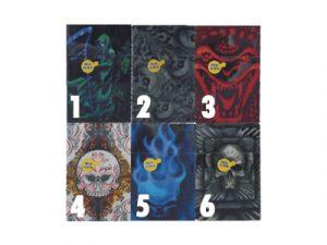 3117-SK2 Plastic Cigarette Case, Skull Design
