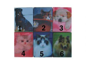 3116-D10 Plastic Cigarette Case, Cat and Dog