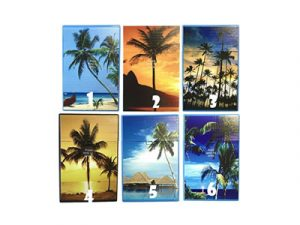 3116-D13 Plastic Cigarette Case, Ocean Palms
